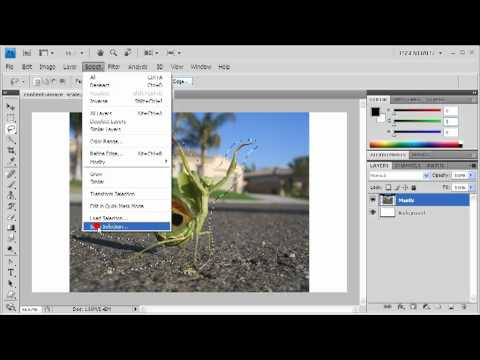 3.3 Resizing with Content-Aware Scale: Adobe Photoshop CS4 Video