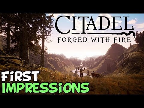 Citadel: Forged With Fire First Impressions
