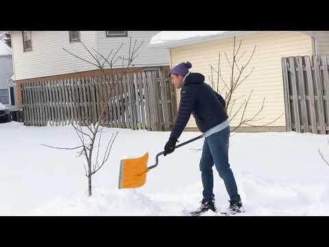 3 Reasons Every Gardener Should LOVE Snow!