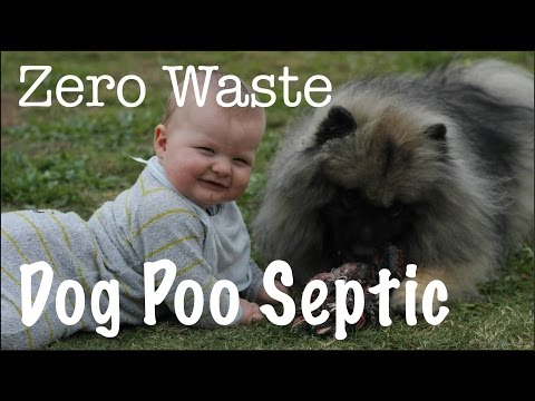 Zero Waste Dog Poo Septic DIY