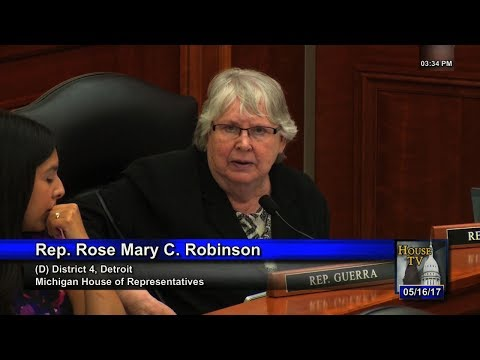 Rep. Rose Mary Robinson Raises Questions Regarding Concealed Weapons Permit Bills