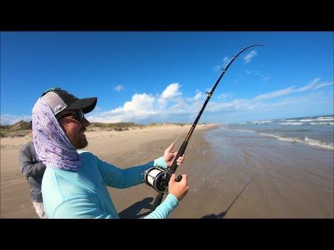surf fishing for BEASTS of the ocean - shark bull redfish