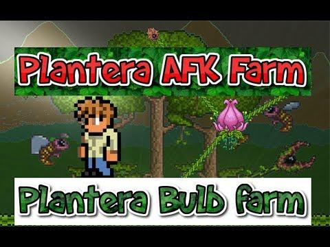 Terraria 3ds How to  AFK Farm Plantera (How To Also Farm the Plantera Bulbs)