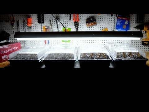 How to Start Vegetable Seeds Indoors in Winter for Spring Planting!