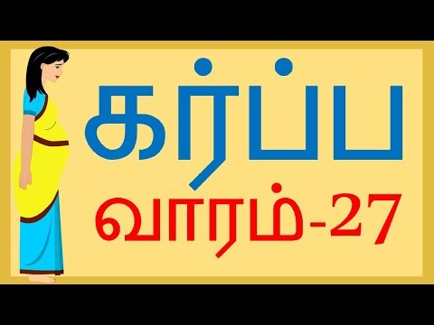 Pregnancy   Tamil   Week by week  Week 27