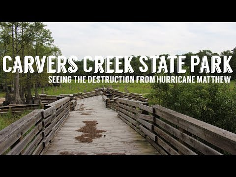 Carvers Creek State Park | Bandit's Roost Campground | Wandering Around In Wonder