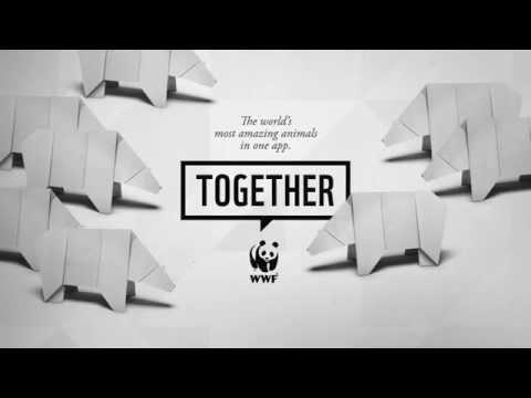 WWF Together - Polar Bears