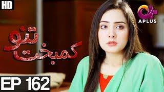 Kambakht Tanno - Episode 162 | A Plus ᴴᴰ Drama | Shabbir Jaan, Tanvir Jamal, Sadaf Ashaan