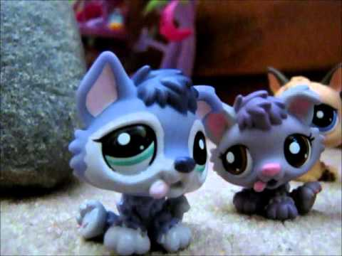 LPS welcome to a magical world of wolves and cougars part 1 ( A pup is born )