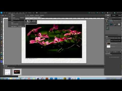 JUST THE RIGHT SIZE IN PHOTOSHOP ELEMENTS