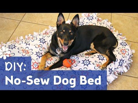 DIY No-Sew Dog Pet Bed | Sea Lemon