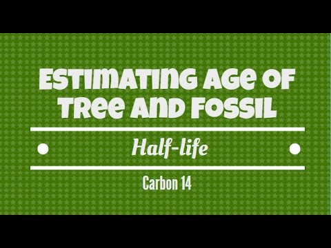 Estimating the Age of a Tree and Fossil.  Half-life Carbon 14