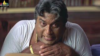JP Scenes Back to Back   Yamadonga Telugu Movie Scenes   Jr NTR, Rajamouli   Sri Balaji Video