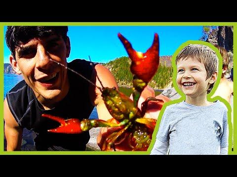 Catching Crayfish At Crater Lake