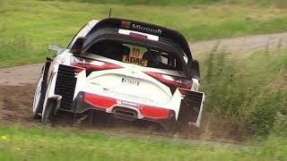 WRC 2017: ADAC Rallye Deutschland 2017 - Pure Sounds, Action, Jumps & More!