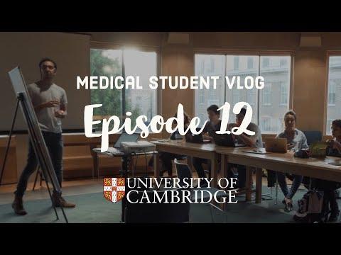 Malignant haematology supervision - Cambridge University medical student VLOG #12