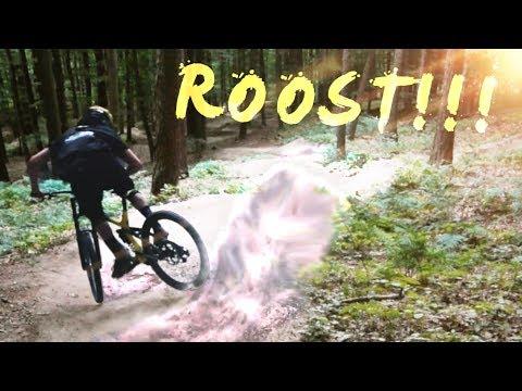 WE NEED MORE DUST! - Roostin Berms with Lukas | Luis Gerstner