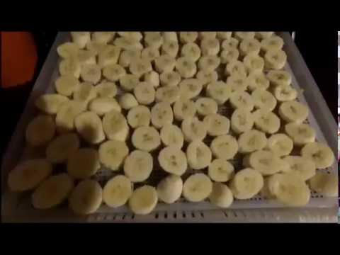 South Central Vegan Makes Dehydrated Bananas to make Banana Chips