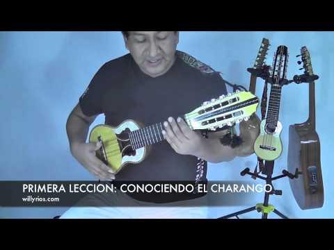 CURSOS DE  CHARANGO NIVEL BASICO. 1   ( Willy Rios)