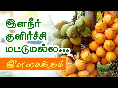 Health Benefits of Tender Coconut Water in Tamil