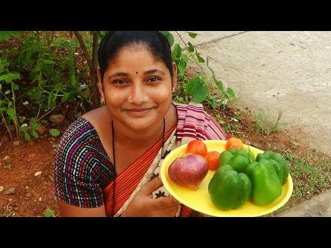 Stuffed Masala Village Foods- Amazing Capsicum Recipes- Indian Style Cooking Capsicum Curry Recipe