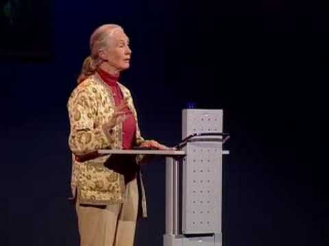 Helping humans and animals live together | Jane Goodall