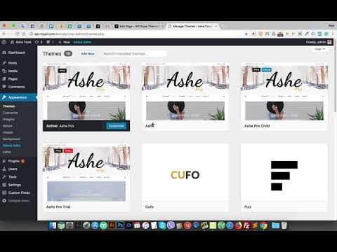 How to Check wordpress Theme Version