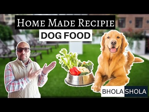Home Made Recipies - About Dog Food - Bhola Shola