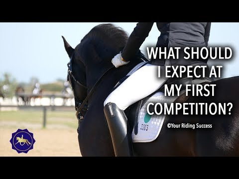 What Should I Expect From My Horse At Its First Show? - Competition Mastery TV Ep12