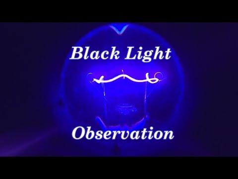 Black Light Observation