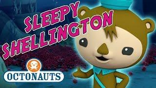 Octonauts - Sleepy Shellington | Urchin Emergency!