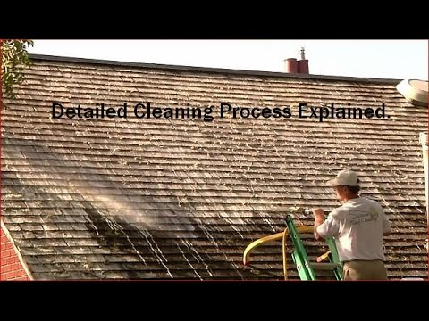 Removing Moss from Cedar Roofs | Cedar Roof Washing | Sullivan Roof Cleaning