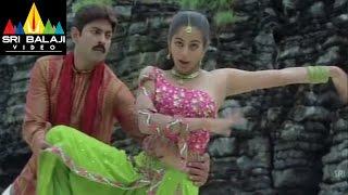 Pellaina Kothalo Songs | Harilo Ranga Hari Video Song | Jagapathi Babu, Priyamani | Sri Balaji Video