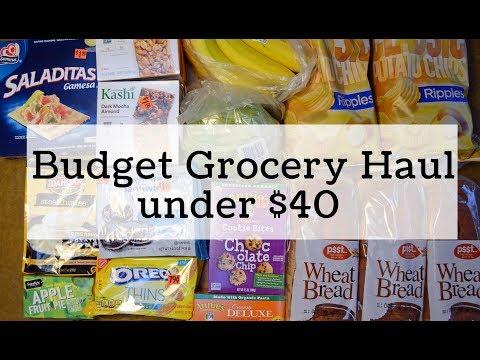 Budget Grocery Haul, under $40 haul