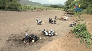 Ravages of drought; 2 million Kenyans at risk of starvation