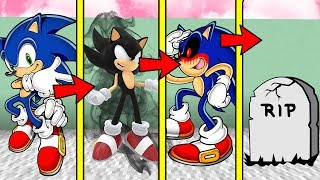 IF MINECRAFT SONIC.EXE HAD A REALISTIC LIFE SPAN (Be Born a Baby & Die Old)