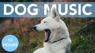 12 HOURS OF RELAXING DOG MUSIC! Great for Anxiety, Crate Training