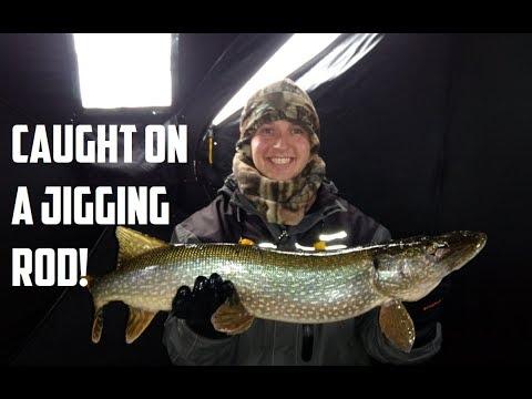 Huge Pike on a Jigging Rod!