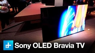 Sony XBR-A1E Bravia OLED - Hands on at CES 2017