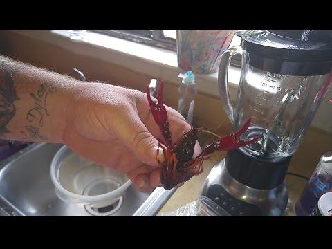 Crawfish Purging (Country Kracka Cooking)