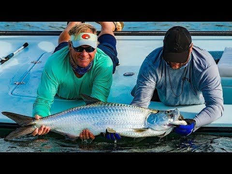 Key West Fishing for Tarpon and Barracuda on the Flats - 4K