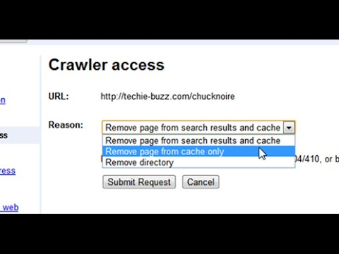 Remove Google Cache - How to Correct Your Web Pages With Google