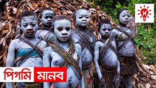 সবচেয়ে খাটো মানব জাতি | পিগমি সম্প্রদায় | কি কেন কিভাবে | Pygmy | Ki Keno Kivabe