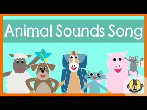 Animal Sounds Song | The Singing Walrus