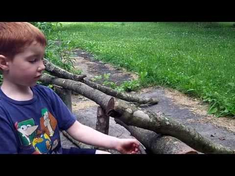 How to make a branch bench