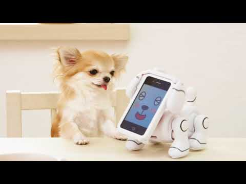 iTUNES 12.7 BANDAI TECH-PET iPhone APP Download Problem