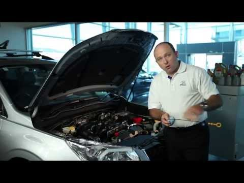 How To Check Your Engine Oil | Subaru Australia