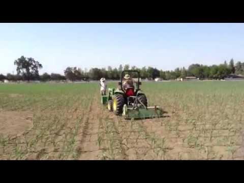 Vossler Farms Cutting the Corn Maze