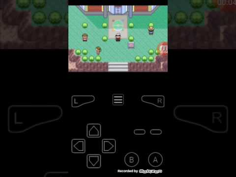 Pokémon Ruby cheats GBA my boy