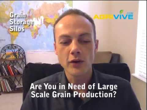 Bulk Grains and Beans, Bulk Grains, Dry Bean and Grains Suppliers, Export Beans, Exporter Bulk